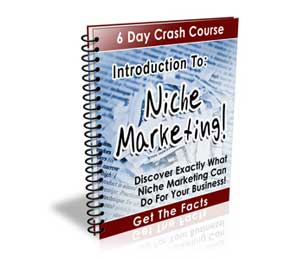 Introduction To Niche Marketing